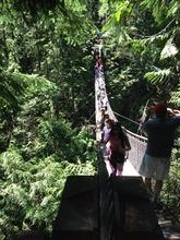 suspention Bridge (1)
