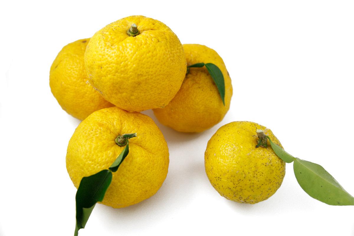 1つの柚子でできちゃう☆この冬大活躍間違いなし♪簡単&激ウマゆず調味料3選
