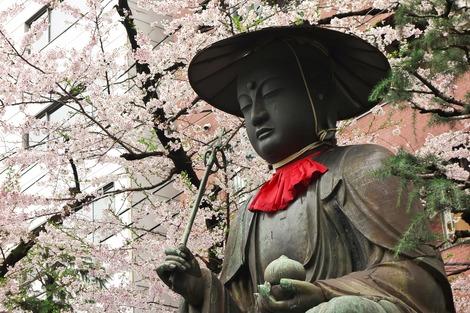 20170408 桜のある風景