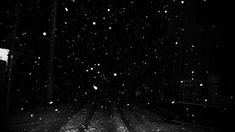 20110214 snow