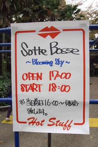 20080412 sotte bosse