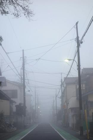 20141113 霧の道