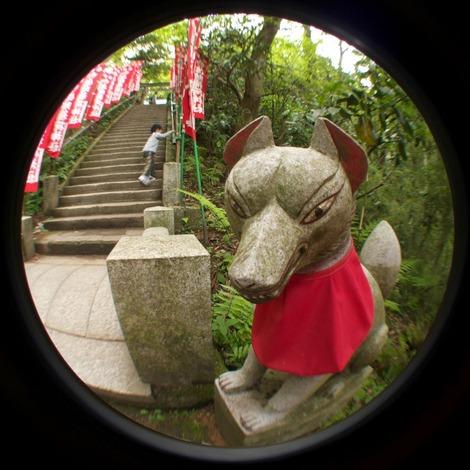 20110502 佐助稲荷