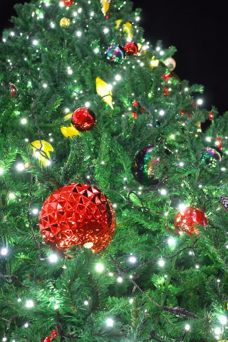 20181114 浦和パルコクリスマスツリー2