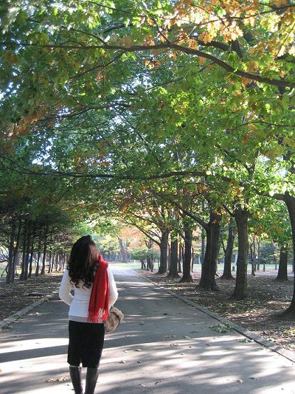 円山公園にて