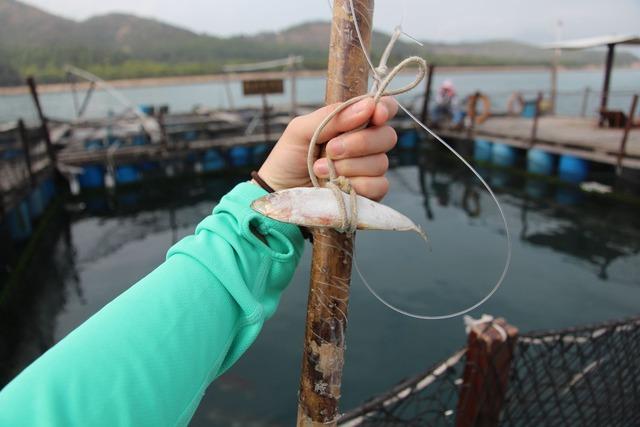 fisherfolk01