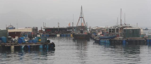 fisherfok16