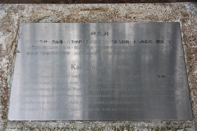 lamma45