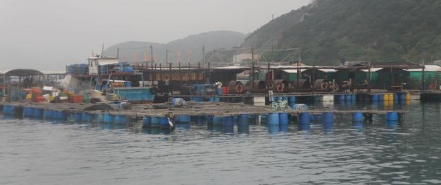 fisherfolk16