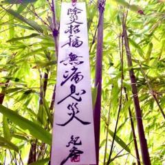 藤原紀香、七夕の短冊の字が達筆と話題「性格がめっちゃ出てる」