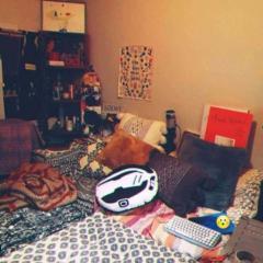 本田翼、自宅部屋を公開でネット騒然「散らかしすぎ」「枕が2個?」