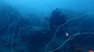 かのっち水深20m