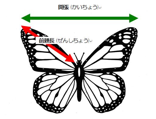 oogomadara
