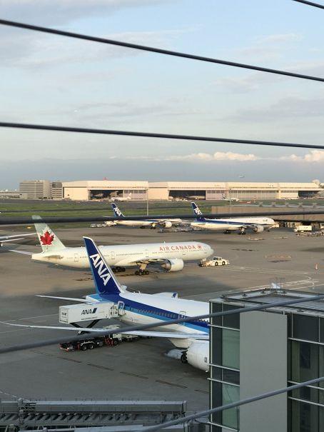 羽田国際線ターミナルからjpg