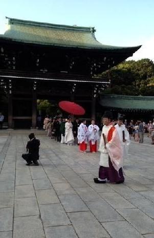 奉賽殿まで歩む花嫁