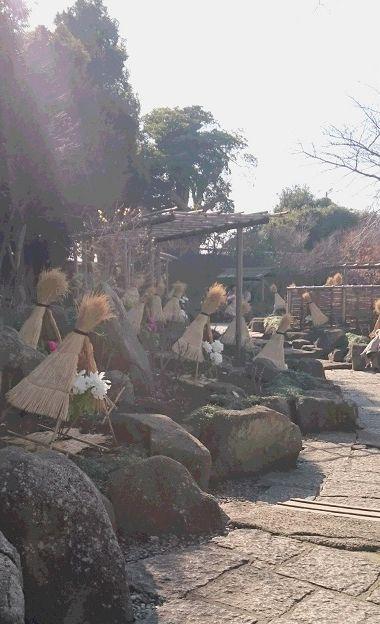 ぼたん庭園3