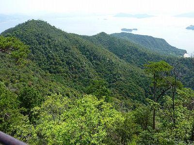 弥山豊かな原始林