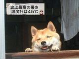 2013_1215_141901-3a401de7