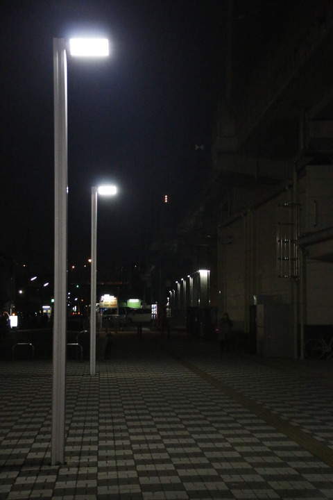_MG_2942