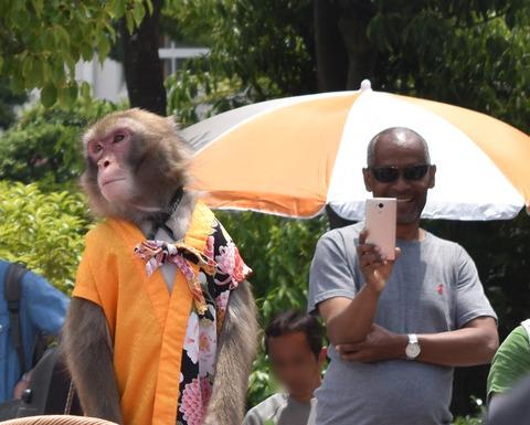 猿回しを見守る黒人男性