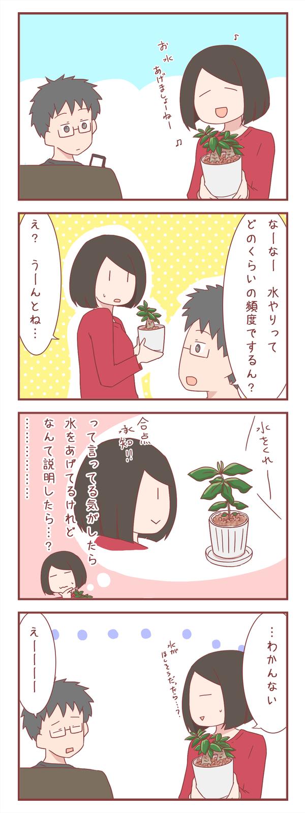 植物の世話の仕方の説明が難しい