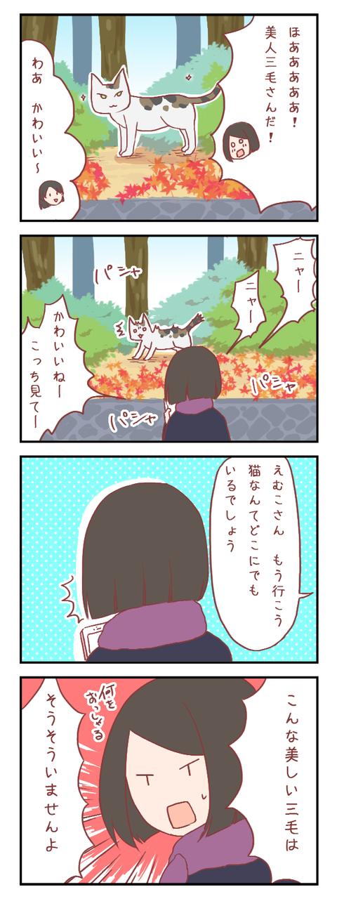 【ろぐ369】美しすぎる三毛猫を前にして
