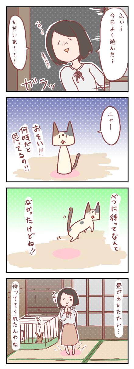 【ろぐ164】うちの猫さんのツンデレが可愛すぎる件