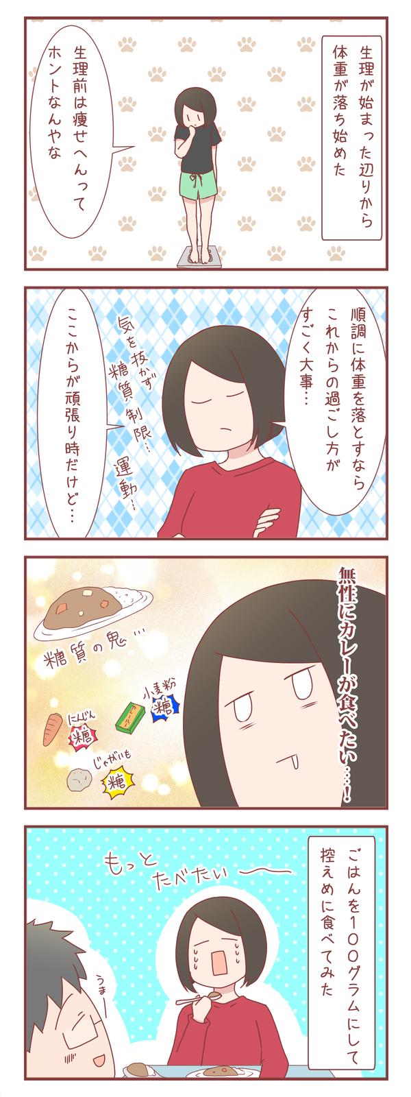 とにかく無性にカレーが食べたくて(ダイエット7日目)
