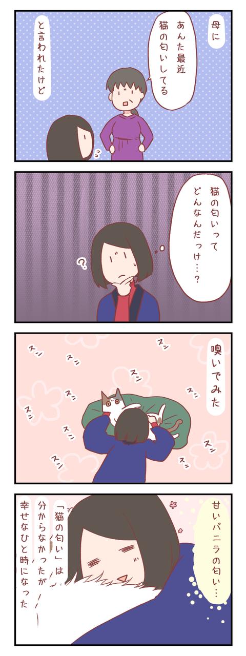 【ろぐ434】「猫の匂い」ってどんな匂い?