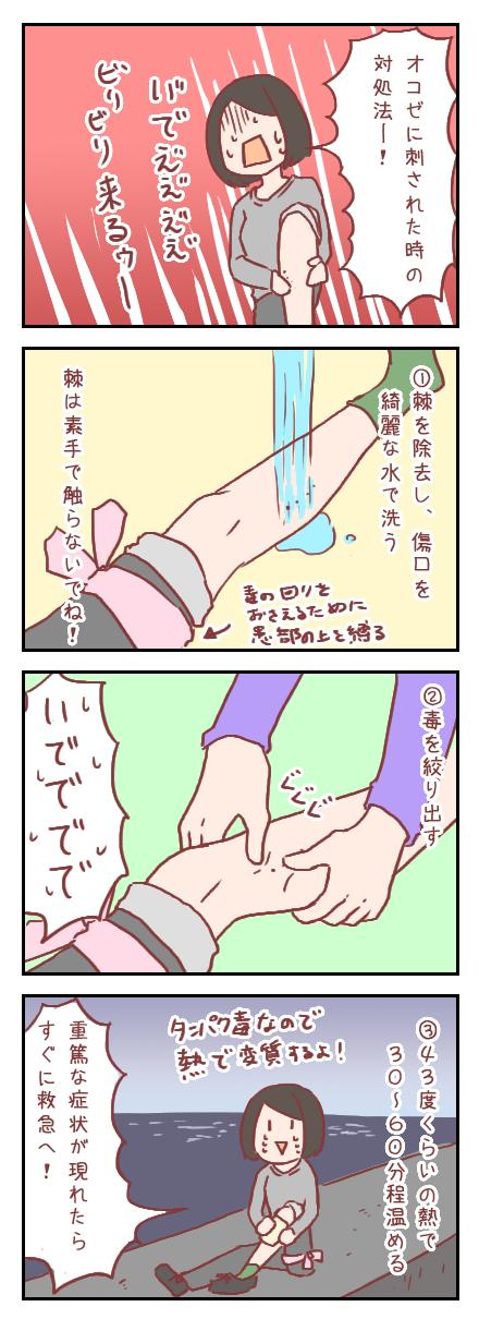 【ろぐ204】オコゼに刺された時の応急処置