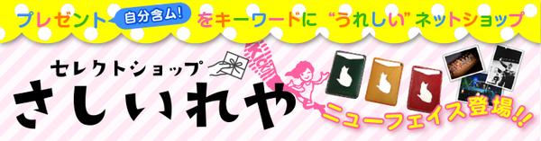 x_0214_sashiire