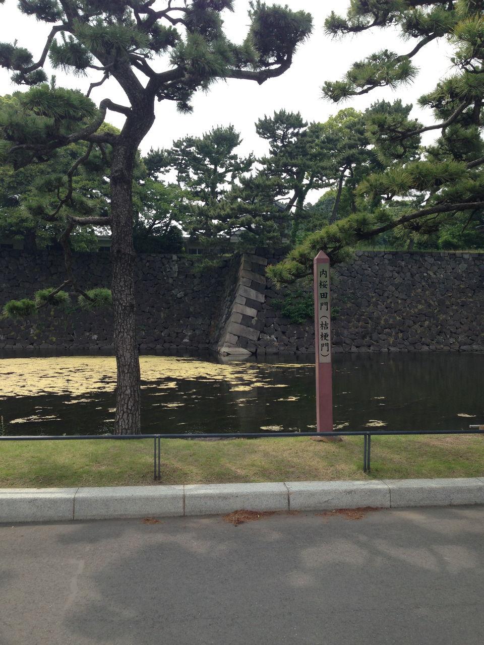 第12回 [さんぽNo.3]皇居外苑=...