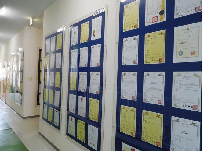 MPDP wall