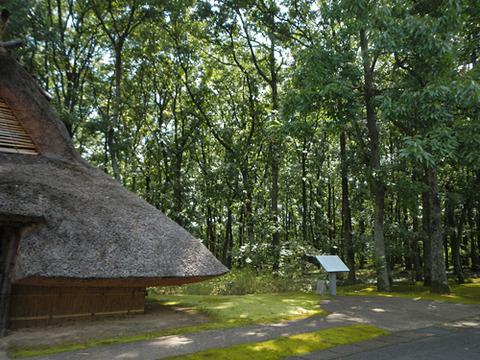 20140928遺跡と自然