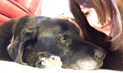 藤原紀香さんと愛犬
