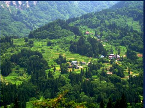 小谷村の山