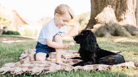 ジョージ王子と愛犬