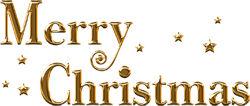 近年のアメリカでは「メリークリスマス」は気軽に使ってはいけない言葉のようだ…最近では「ハッピーホリデー」と言うのが主流らしいぞ