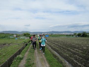 奈良観光ラン17-IMG_2751
