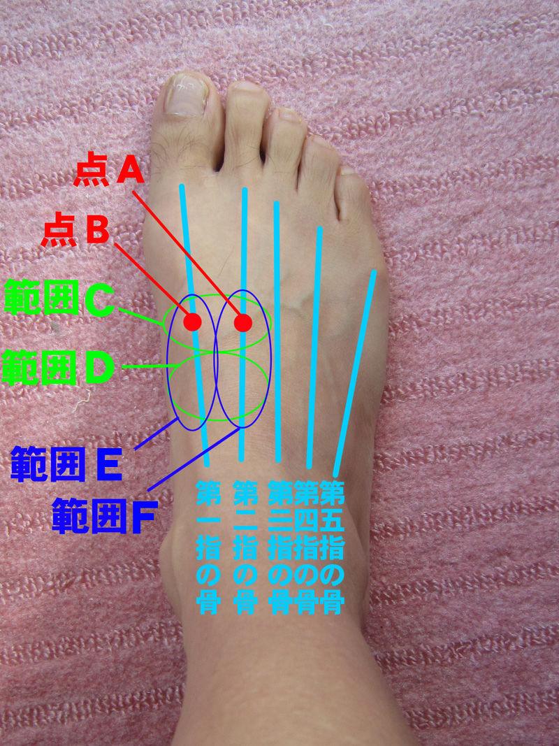 の 痛い 押す と 足 甲