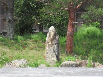 奈良観光ラン17-IMG_2724