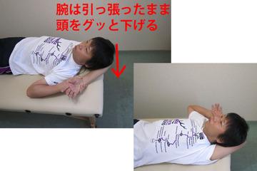 肩甲骨-B3