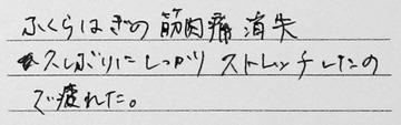 ストレッチクリニック 感想-4