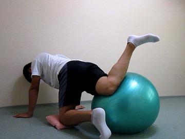 骨盤ボール-横-8