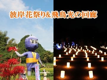 彼岸花祭り2018