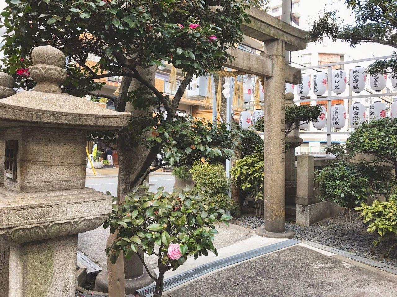 京都の神社