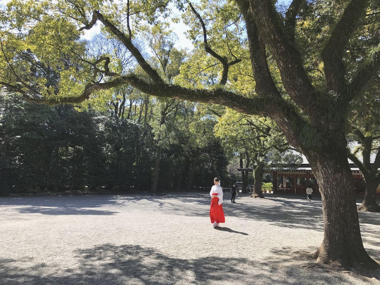 熱田神宮の巫女さん
