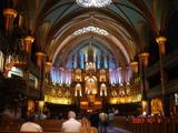 ノートルダム大聖堂2