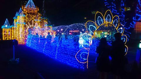 20191224 クリスマスイブ_191231_0011