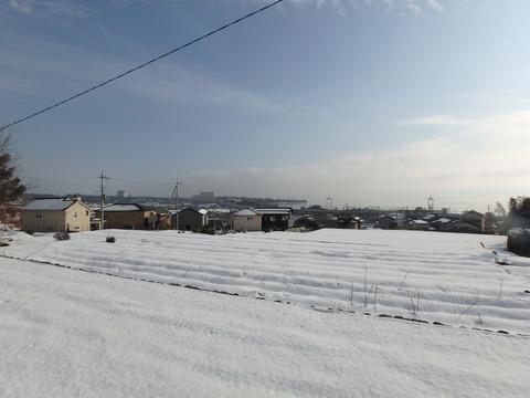 P1290001